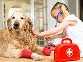 Girl playing doctor with dog
