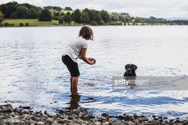 Girl playing with her labrador dog in a lake, Ireland