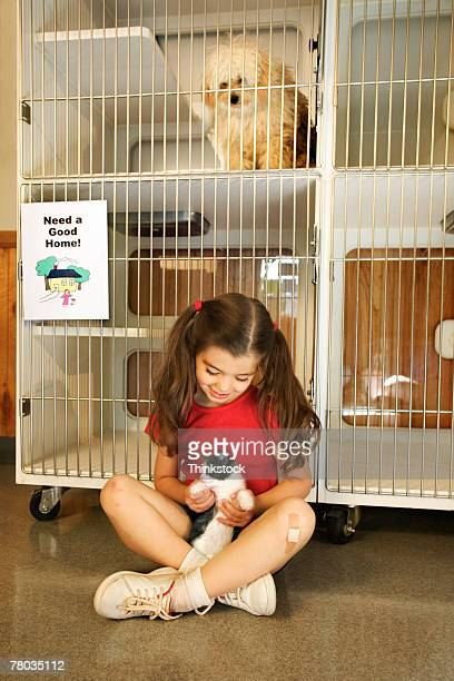 Girl playing with kitten at animal shelter