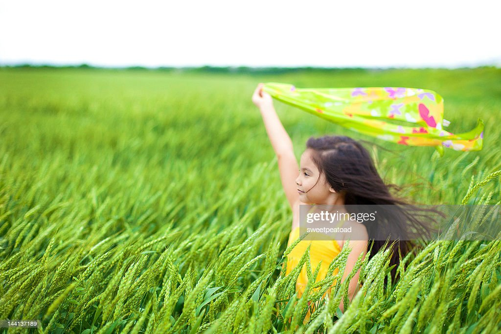 Girl playing with scarf in hay field : Stock Photo