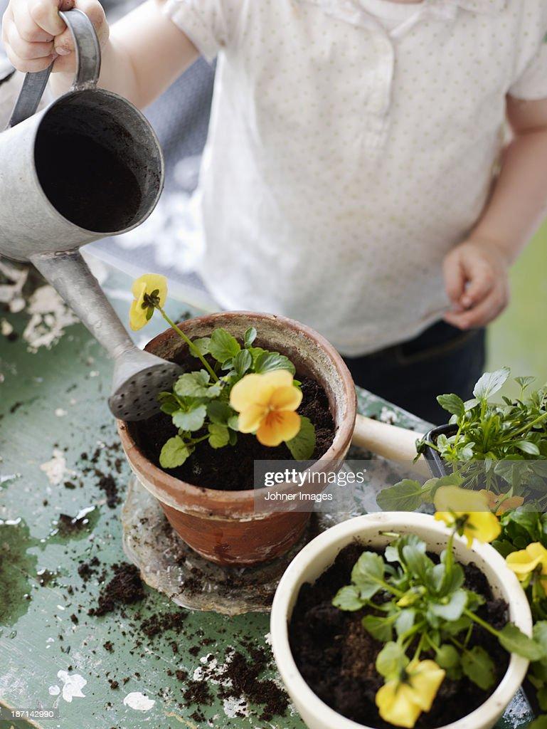 A girl potting plants, Sweden.