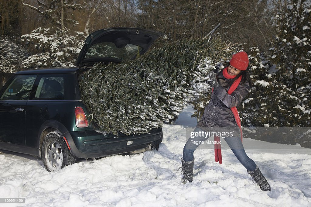Girl pushing a christmas tree in a small cacr