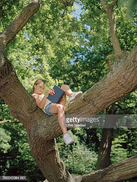 Girl (10-12) relaxing on tree branch, reading book