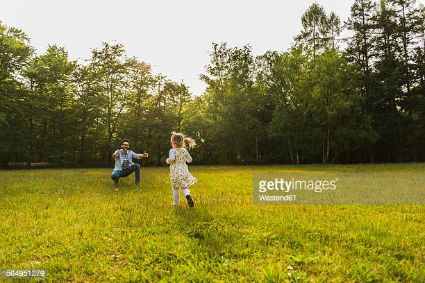 Girl running towards father on meadow