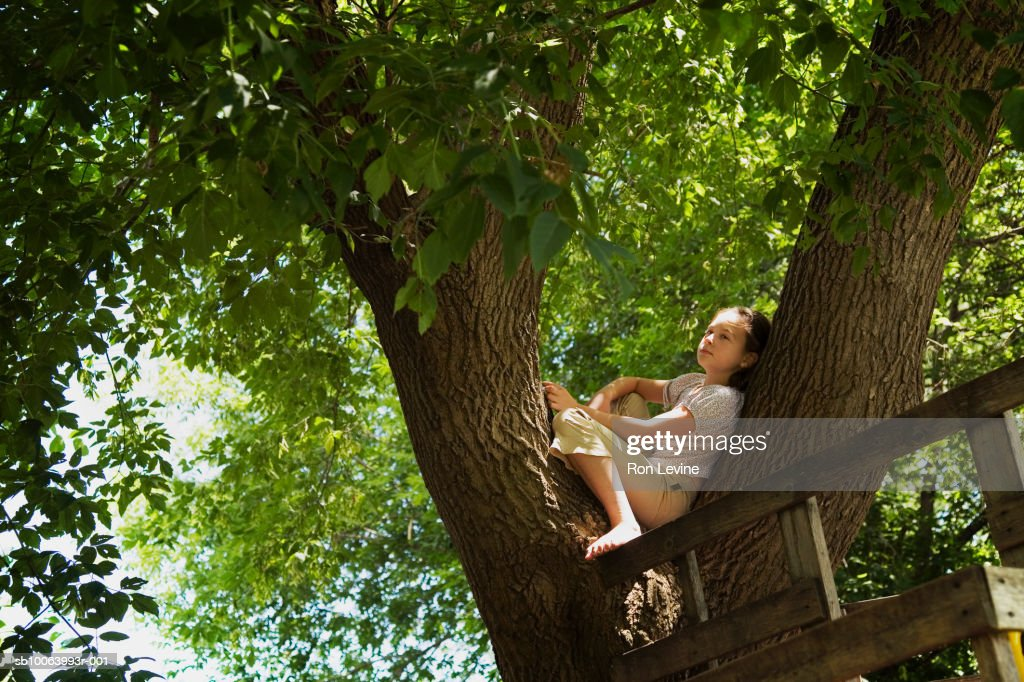 Girl (10-11) sitting on branch by tree house : Stock Photo