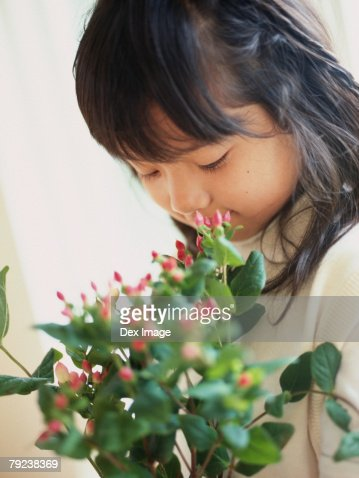 Girl smelling flowers, close-up : Stock Photo
