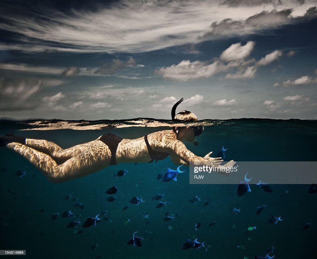 Girl Snorkelling in Indian Ocean : Foto de stock