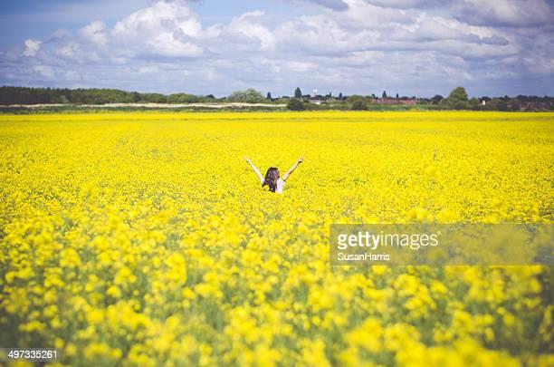 Junge Frau in rapeseed field
