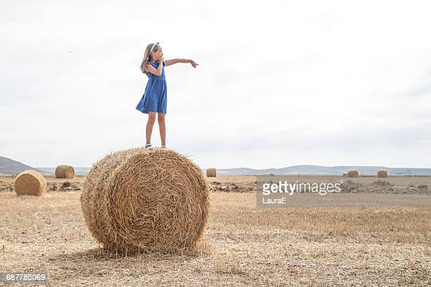 Girl standing on a hay bale in a field