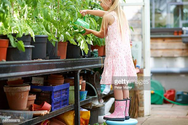 Girl standing on stool to water the plants in greenhouse