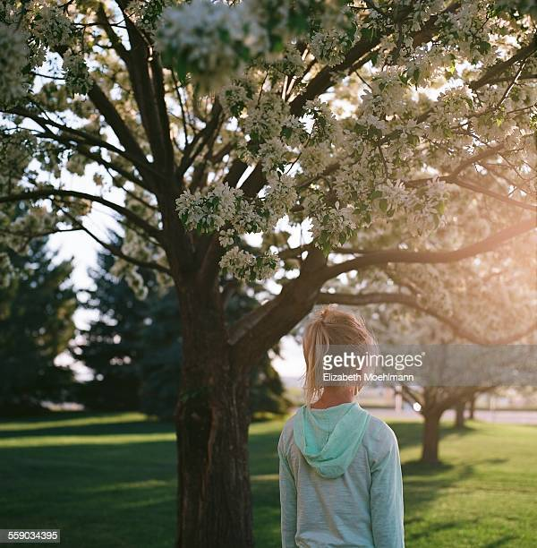Girl standing under blossoming trees