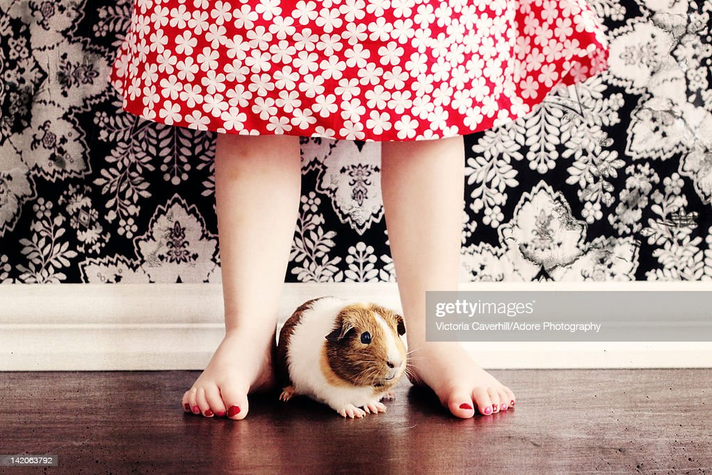 Girl standing with guinea pig against pattern wall.