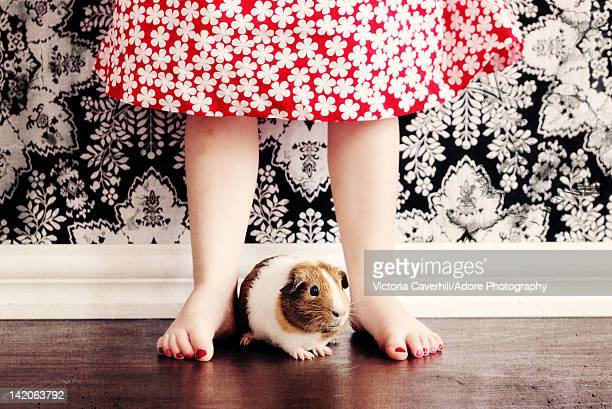 Girl standing with guinea pig
