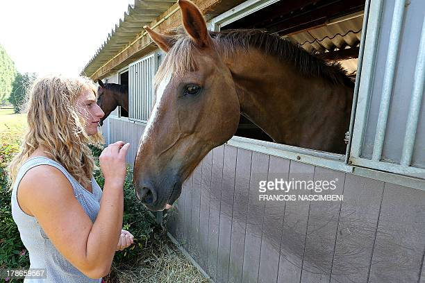 A girl stands by a horse at the equestrian center of Rethel on August 30 2013 The equestrian center was victim of an unscrupulous horse dealer who...