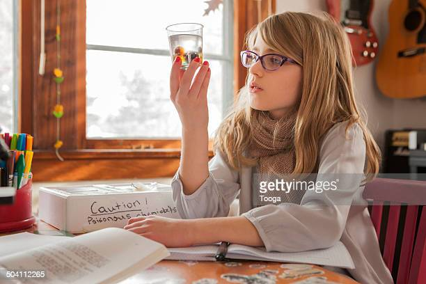 Girl studying science experiment