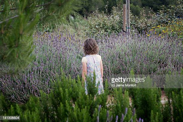 Girl surrounded by lavender plants