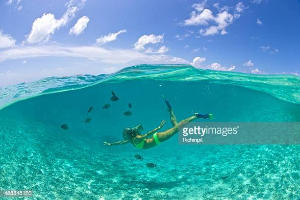Petite fille nage avec poissons tropicaux dans un lagon transparent