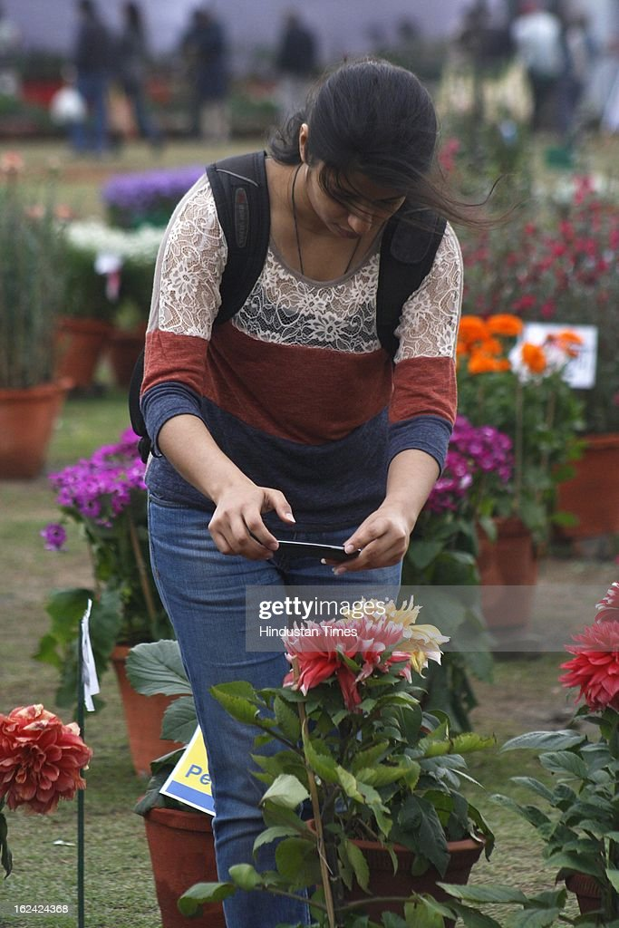 A girl taking pictures of the flowers on the 2nd day of the 27th Flower Show organised by 'The Floriculture Society of Noida' at Sector 21A on February, 23, 2013 in Noida, India. The annual flower show was opened for general public on Feb. 22 & will conclude on Feb. 24.