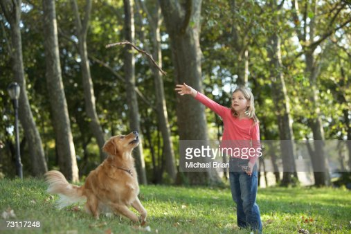 Girl (10-11) throwing stick to dog in park : Stock Photo