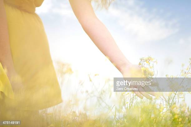 Girl touching flowers on meadow