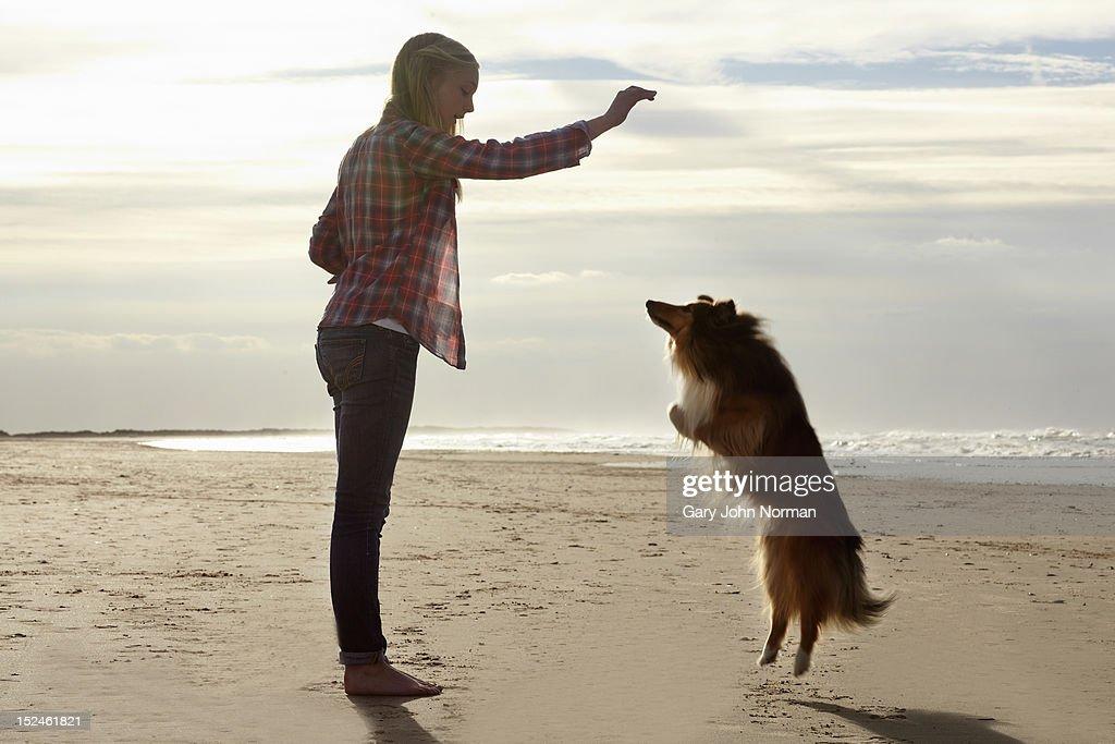 girl ( 14-16) training dog on beach : Stock Photo