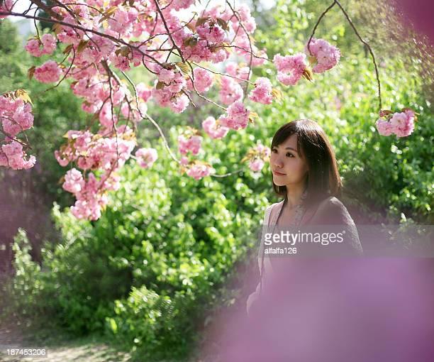 Girl under cherry tree