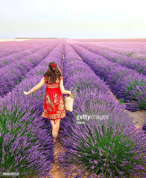 Girl walking for meadow lavender