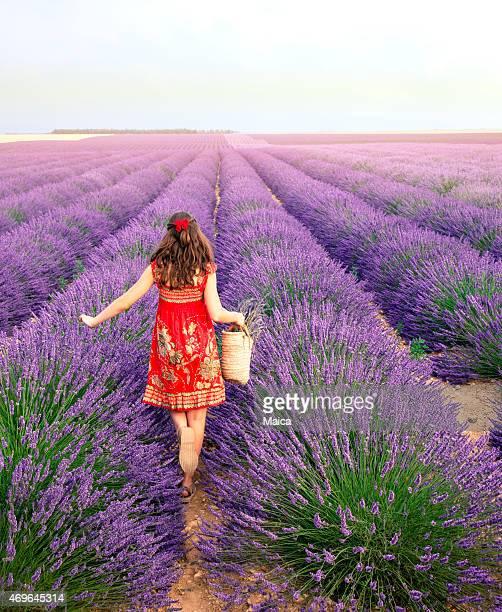 Mädchen zu Fuß auf Wiese mit Lavendel