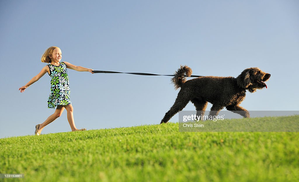 Girl walking her dog n a hill : Stock Photo