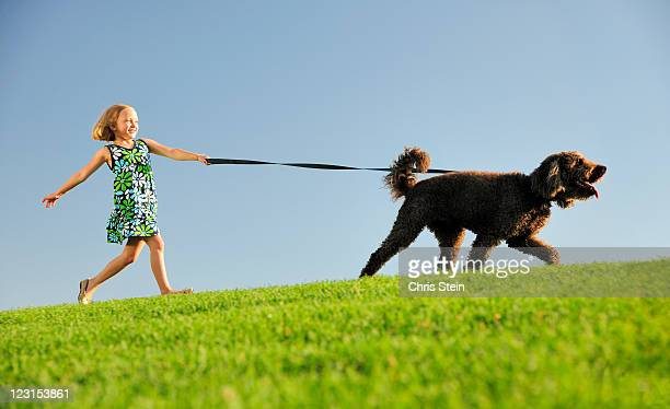 Girl walking her dog n a hill
