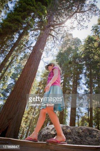 girl walking on fence beneath giant trees : Stock Photo