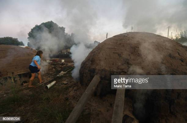 A girl walks as smoke rises while Amazon wood scraps are burned for charcoal in a deforested section of the Amazon on June 26 2017 near Ariquemes...
