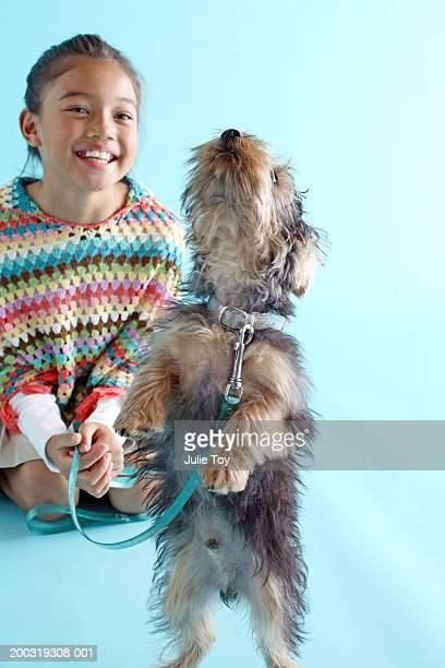 Girl (8-10) watching Yorkshire Terrier walking on hind legs