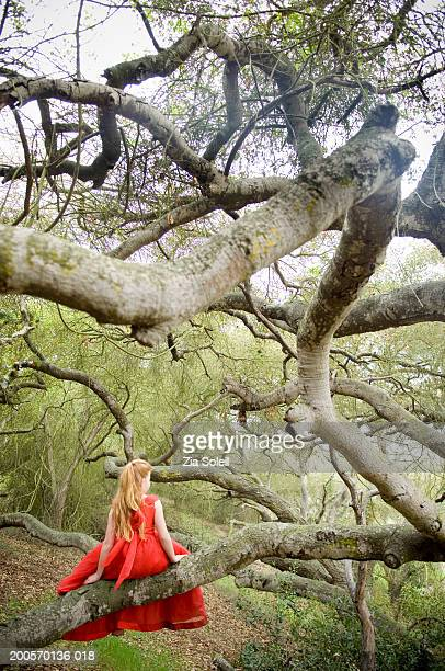 Girl (8-9) wearing fancy dress sitting on branch, rear view