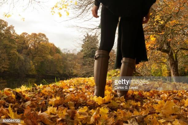 Girl wearing wellington boots walks on blanket of yellow leaves
