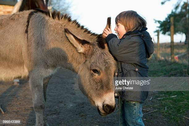 Girl whispering in donkeys ear on field