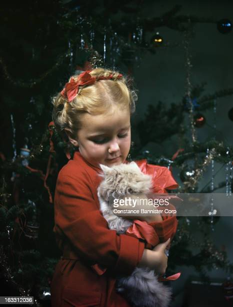 Girl with a braid in her hair holding a kitten Christmas tree in background New York City USA
