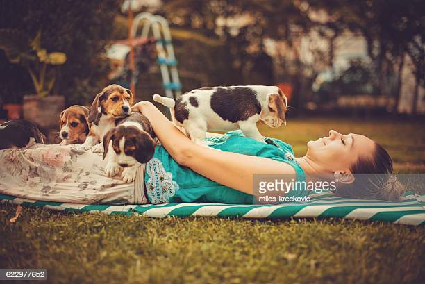 Girl with beagle puppies