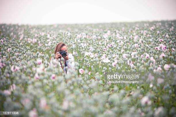 Girl with Camera in Opium Poppies