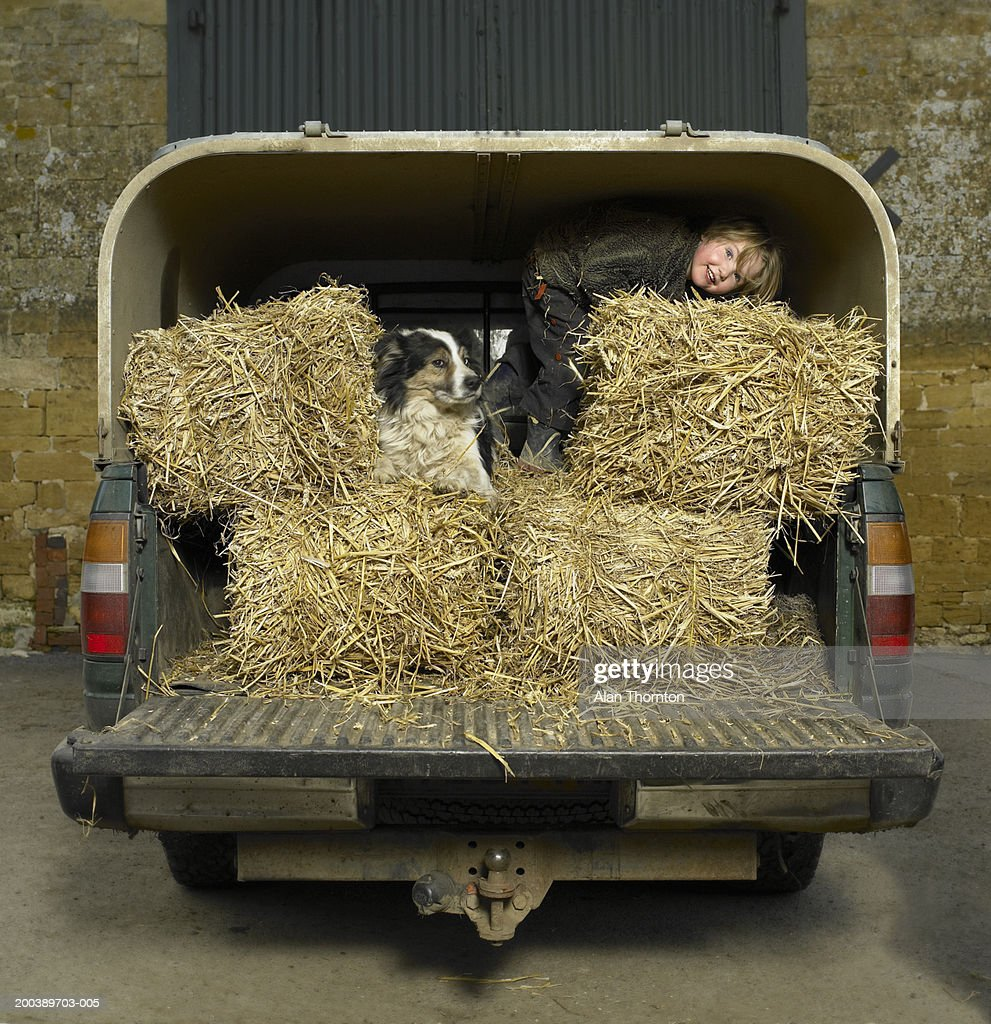 Girl (3-5) with dog amongst hay bales on back of 4x4, smiling : Stock Photo