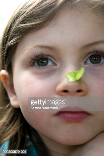 Girl (5-7) with helicopter seed on her nose, close-up : Stock Photo