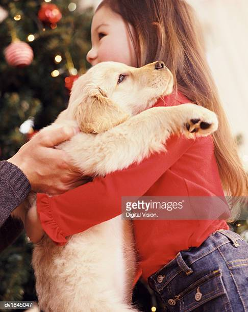 Girl With Long Brown Hair Embracing a Puppy, Christmas Gift