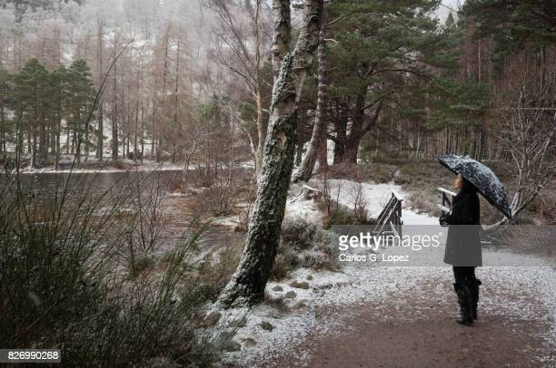 Girl with umbrella standing near bridge covered in snow in forest