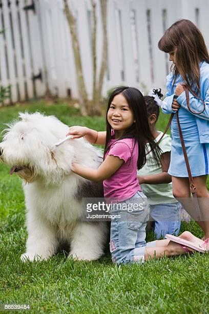 Girls combing and brushing dog
