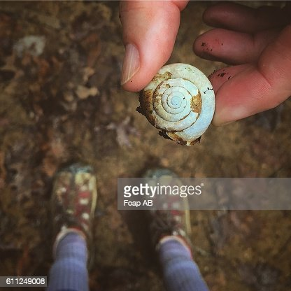 A girl's hands holding a shell
