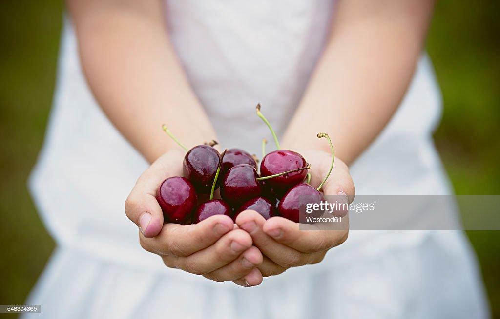 Girls hands holding cherries