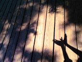 girl's hands shadow like a bird