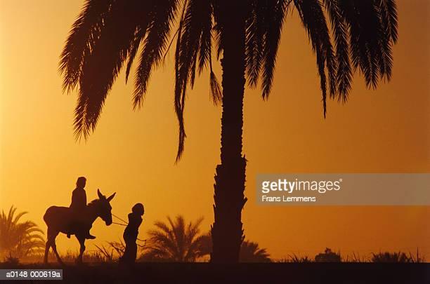 Girls on Donkey at Sunset