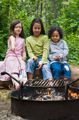 Girls roasting marshmallows over campfire