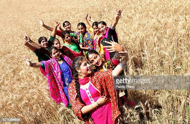 Girls take a selfie during the celebration of Baisakhi Festival in a wheat field The Baisakhi is the beginning of the new season People of North...